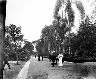 Jardim da Luz em 1908. Foto de Guilherme Gaensly
