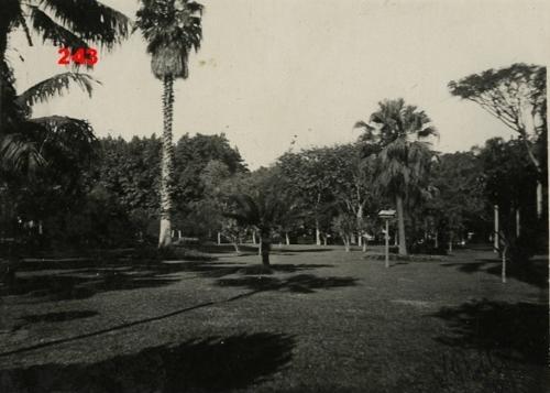 Jardim da Luz na década de 30