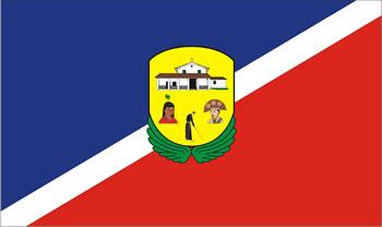 Bandeira de São Miguel Paulista